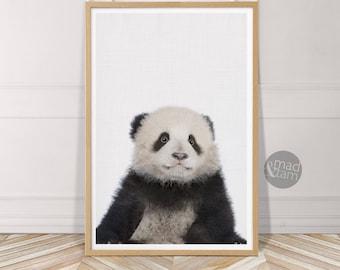 Baby Panda Print, Nursery Wall Art, Baby Nursery Animals, Panda Bear Cub, Nursery Decor, Printable Art, Baby Animal Photo, Kid's Room Art