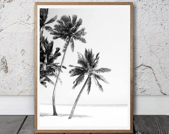 Palm Tree, Digital Download, beach decor, Home Decor, Printable Art, Printable Wall Art,  Housewarming Gift, Photography, Black And White