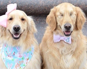 Monogram Dog Bow Tie in Purple Seersucker -  Dog Lover Gift by Three Spoiled Dogs