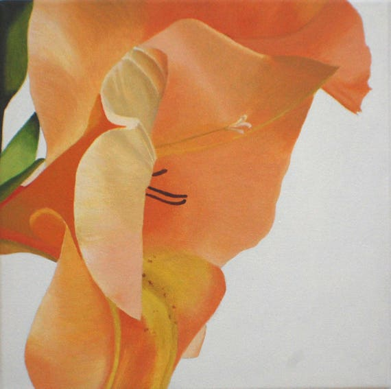 Review il 570xN pvck For Your House - Popular orange flower painting Lovely
