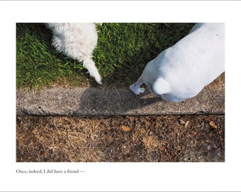 Westie Dog Card - Blank Inside - Friend Card - Thinking of You Card - Missing You Card - Dostoyevsky Greeting Card