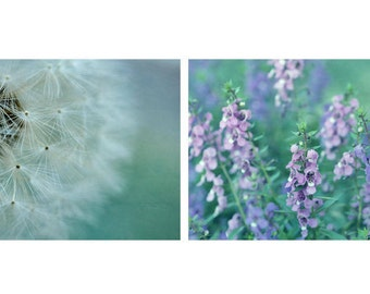 Teal wall art set, floral photography, nature art set of 2 photo prints 9x12, 10x13 dandelion flowers botanical print set, teal wall decor