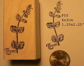 Thyme herb rubber stamp WM P55