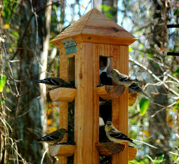 finch yankees bird product lovers feeder bl up droll bottoms