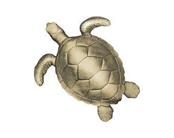 The Crush | Faux Sea Turtle Wall Decor by Wall Charmers™ | Shellsea Tortoise Turtle Animal Wall Mount | Beach Home Decor |  Ocean Wall Decor