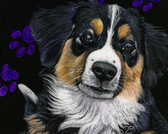 English Shepherd Puppy scratchart print -Gemma