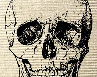 Digital Transfer Image, Antique Skull, Halloween Illustration, Instant Download for Paper crafts, Iron on Transfer, Pillows, Fabric, etc 284