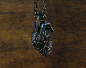 Anatomical Human Heart in Dark Noir, Solid Bronze, Anatomic Human Heart Pendant, dangles on a 20 inch chain
