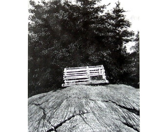 """Trap - Jamie Wyeth - 1971 Vintage Book Page - Reproduction - Black and White - 9.5"""" x 10"""""""