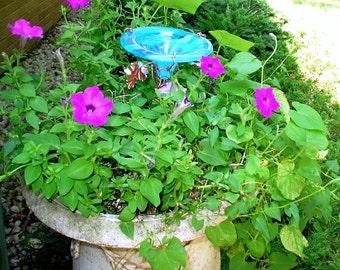 GARDENING, Butterfly Feeder, stained glass, Aqua, copper, Container Gardening, Patio Gardening, garden stake, Garden Art