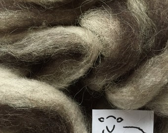 Bicolor Icelandic Wool Roving, 6 oz.
