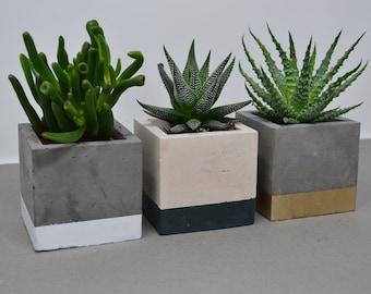 Set of 3 Concrete Pot - Succulent Planter - Indoor Concrete Planter - Cactus Planter - Housewarming Gift - Air Plant Holder - New Home Gift