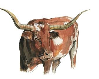 Longhorn Watercolor Illustration Print Artwork