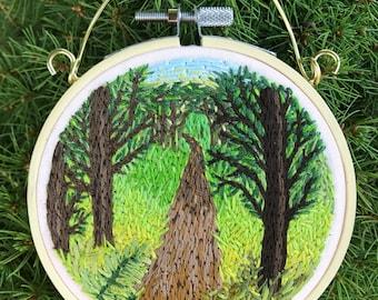 Sunlit forest path hoop