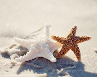 starfish photograph, beach photo, beach cottage decor, white home decor, starfish art, BFFs