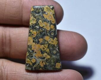 Leopard Skin Jasper Cabochon....40x22x5 mm...37 cts...##434