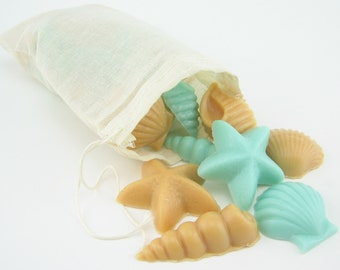 Light Blue and Sandy Brown Seashell Soy Wax Melts for Ocean Decor or Beach Wedding