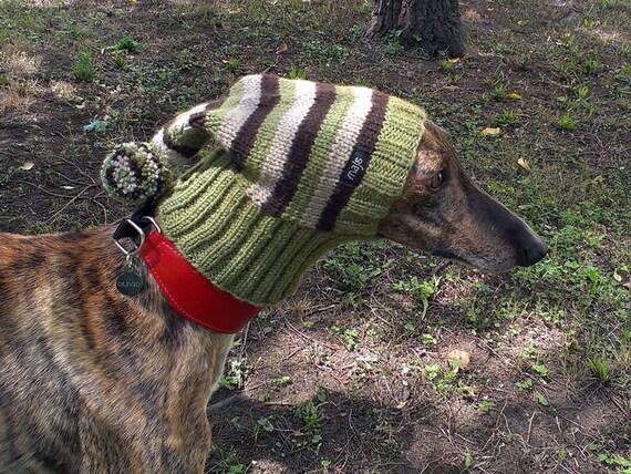 windhund mütze