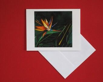 Paraiso IV Greeting Card