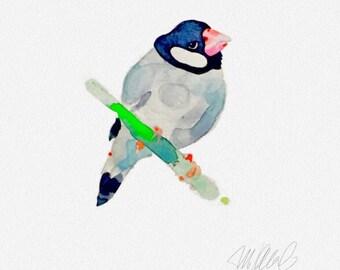 "Finch watercolor 8x8"" Giclee print wall decor fine art animal print bird prints office decor art prints"