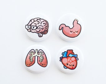 Human Anatomy Button or Magnet or Keychain, Heart Magnet, Heart, Brain, Stomach, Lung, Biology Gift, Medical Gift, roocharms, Cute, Science