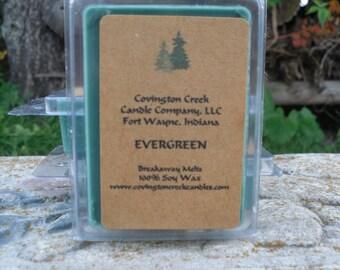 Evergreen 3 or 6 Ounce Soy Breakaway