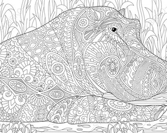 Hippo. Hippopotamus. 2 Coloring Pages. Animal coloring book pages for Adults. Instant Download Print