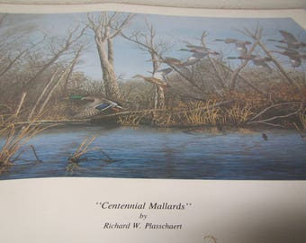 Richard Plasschaert CENTENNIAL MALLARDS Ducks Print * signed & numbered * 1989 N. Dakota Ducks Unlimited Print