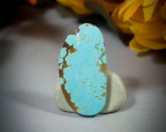 Number 8 Turquoise Cabochon 40-4681