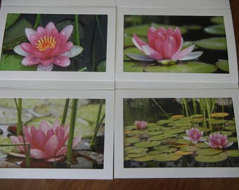 Wondrous Waterlillies Photo Note Cards