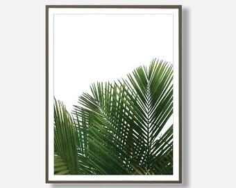 Palm Leaf Print, Palm Leaf Digital Prints, Palm Leaf Photography, Palm Leaf Photo Print, Printable Palm Leafs, Feliss-Art