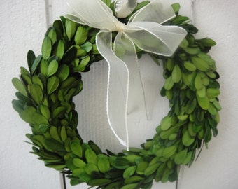 "Preserved Wreath  Boxwood Wreath  Preserved Boxwood Wreath Home Decor  Saint Patrick's Day  Wedding Decor 8"" Boxwood Wreath"