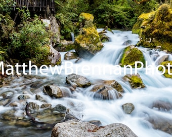 Canvas Photo Art, Forest Stream Waterfall, New Zealand Fjords Landscape