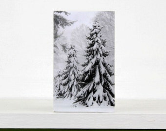 White Christmas, Evergreens in Snow, Trees, Holiday Decor, Winter Decoration, 3X5 Wood Panel