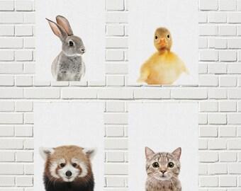 baby animal print/Woodland nursery print/set Forest animal print/cute wall print set/rabbit cat donkey lesser panda duck giraffe poster set