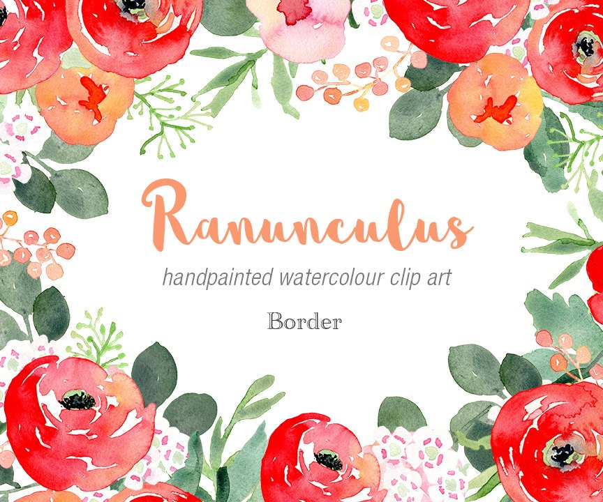 Floral Watercolour Clipart - Ranunculus Elements with red ...