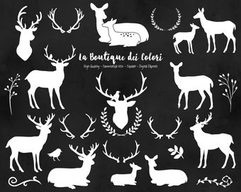 White Deer Silhouette Clipart, Cute Graphics PNG, Christmas deer head, doe, fawn, antlers, rustic wedding  Clip art, Commercial Use