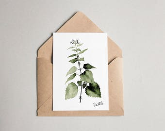 Nettle folded card