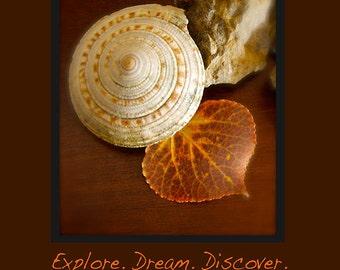 Explore. Dream. Discover. Journal