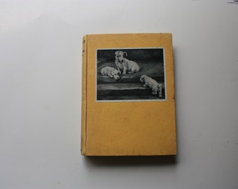 Puppies by Rowland Johns with Illustrations by Florence Jay Methuen  & Co. Ltd  1933