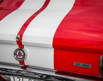 Ford Mustang Shelby Cobra 350 GT Car Photography, Automotive, Auto Dealer, Muscle, Sports Car, Mechanic, Boys Room, Garage, Dealership Art