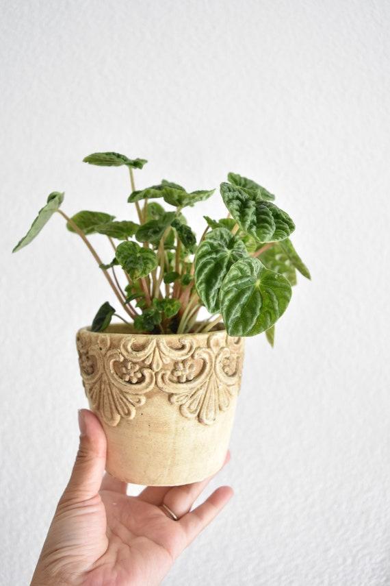 small floral textured ceramic flower pot planter