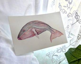 Watercolor Pink & Gray Whale