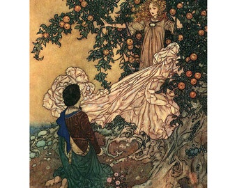 Fairy and Prince Greeting Card - Hans Andersen Garden of Paradise - Edmund Dulac