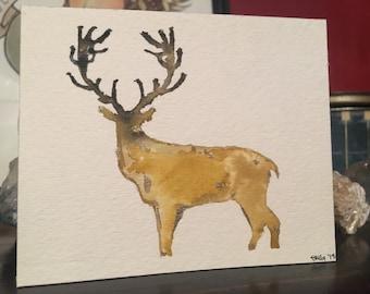 Elk stag, poised