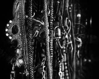 Tack on the Wall (Prints) black and white photograph horse tack bits bridles reins