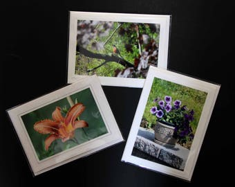 Photo Cards Spring Flowers  Group 3