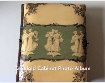 Celluloid Cabinet Photo Album (1892-1915)/Historic Photo Album/Art Nouveau Photo Album/Heirloom Photo Album/Photography Collectibles/Albums