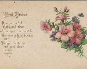 Best Wishes Beautiful Bouquet of Violets and Primrose Decorates this beautiful Vintage Postcards Early 1900's