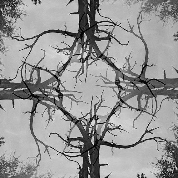 """Black and White Modern Art Print """"Embrace Yourself"""" Dreamcatchers Series Woodland Decor Forest Bare Tree Branches Masculine Decor"""